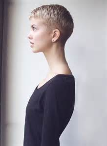 cropped hairstyles with wisps in the nape of the neck for hairxstatic short back cropped gallery 1 of 3 short