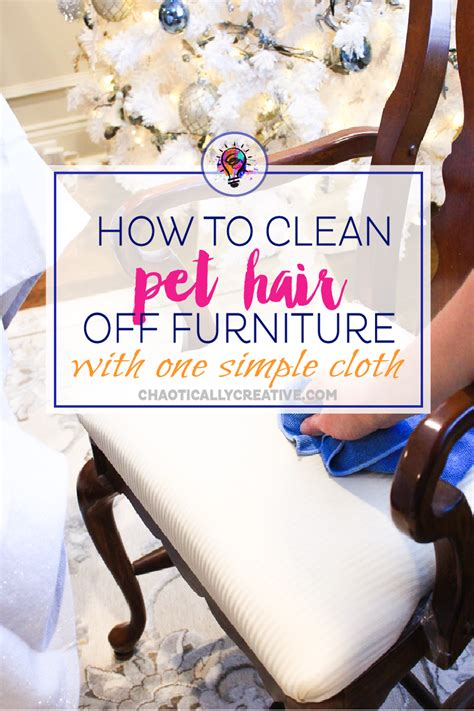 how to keep dog hair off couch how to clean chairs covered in pet hair chaotically creative