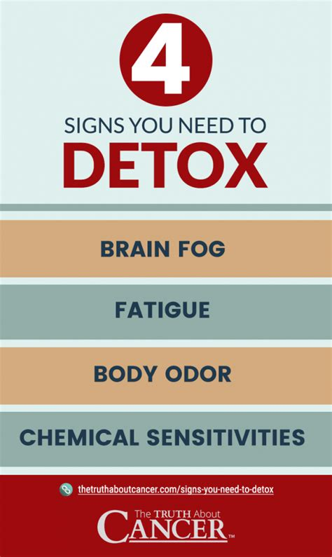 Signs You Need Kidney Detox by Is Your On Toxic 4 Signs You Need To Detox