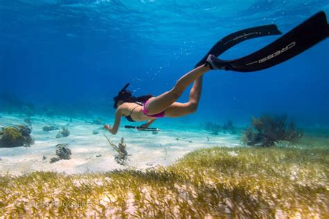 In The a guide to spearfishing in the bahamas bahamas