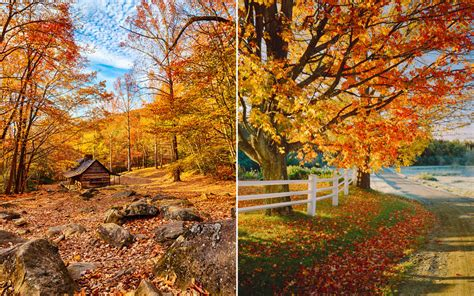 fall autumn the only map you need to plan a perfect fall foliage trip