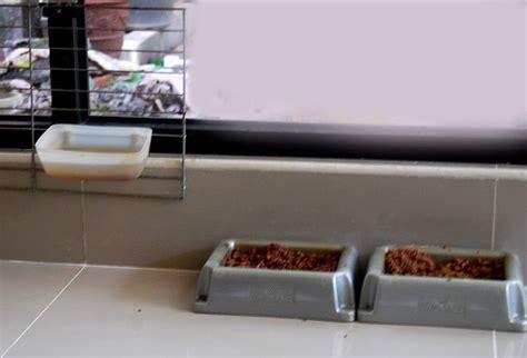 Tempat Makan Hamster Tempat Makan Hewan tempat makan kucing binatang peliharaan