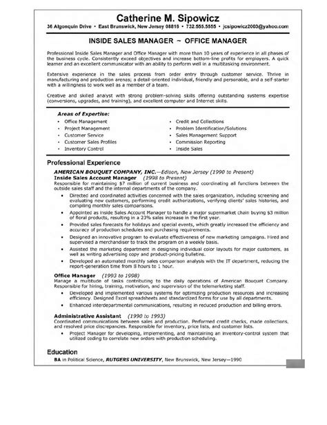 resume sles for experienced it professionals career sales management sle resume
