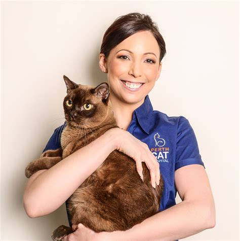 drive and cat hospital dr martine boeijen perth cat hospital perth cat vets