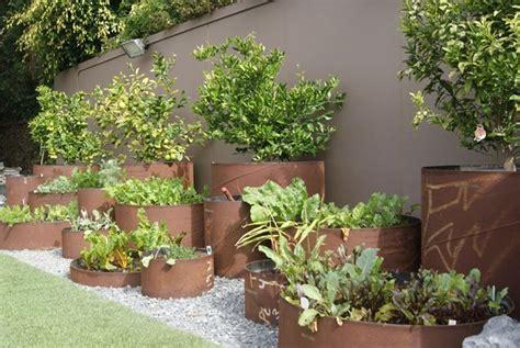 Landscape Ideas Southern California Southern California Landscaping Venice Ca Photo