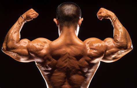 fitness e alimentazione ptonline professionisti fitness e alimentazione il