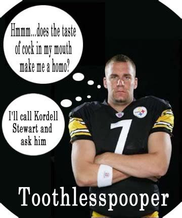 Pittsburgh Steelers Suck Memes - you a steelers pictures hater quotes quotesgram