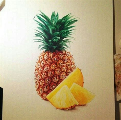 pineapple color realistic pineapple drawing colored pencil