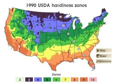 vegetables zone 5 zone 5 gardening hardiness and what to plant when