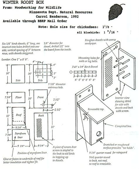 bluebird house plans bluebird house and bluebirds on