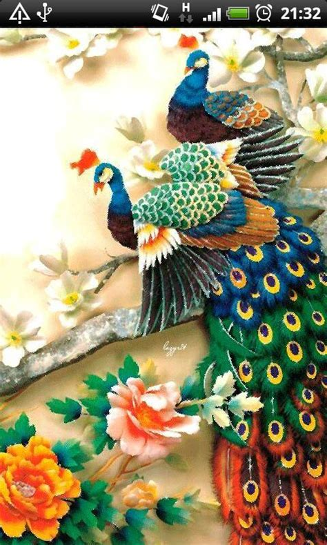 download colorful live wallpaper for android by colorful peacock live wallpaper free apk android app