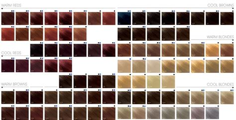 Best Shades Of Orange Chocolate Cherry Hair Color Pictures Formula With Red