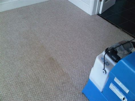 using vinegar in rug doctor 41 best images about rug doctor on carpets different shapes and professional carpet