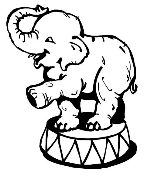 Circus Elephant Amazing Balance Coloring Pages Circus Circus Elephant Coloring Page
