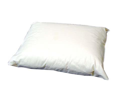 Disposable Pillow disposable personal pillow colonialmedical