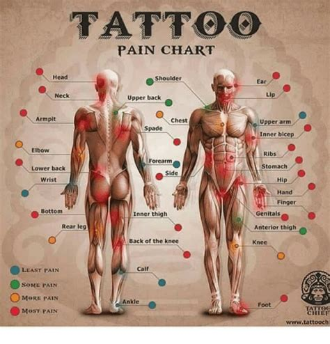 upper arm tattoo pain chart shoulder ear neck back armpit