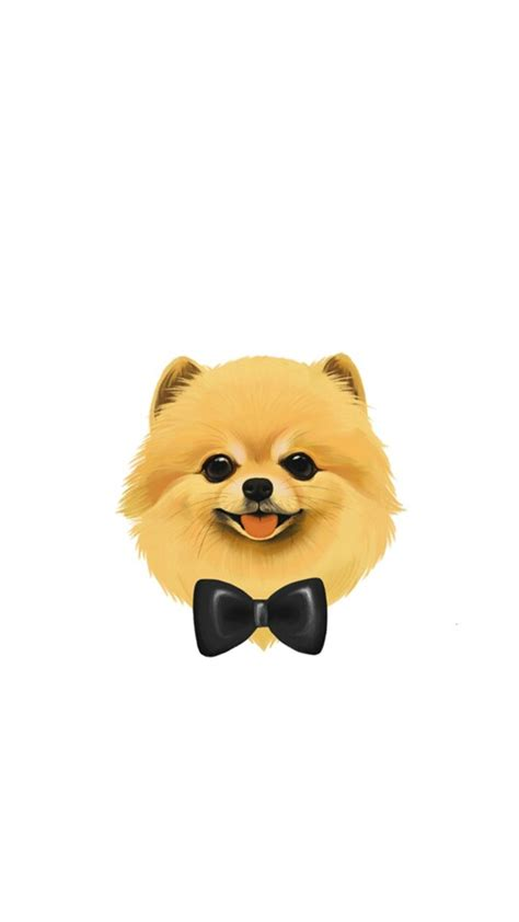 pomeranian wallpaper pomeranian wallpaper wallpaper wallpaper pomeranians and