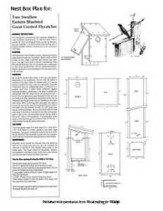 Eastern Bluebird House Plans Bird House The Turtlecovebrewer