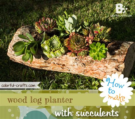 Garden Decoration Logs by How To Make A Wood Log Planter With Succulents Colorful