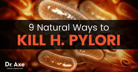 h pylori treatments what it is how to get rid