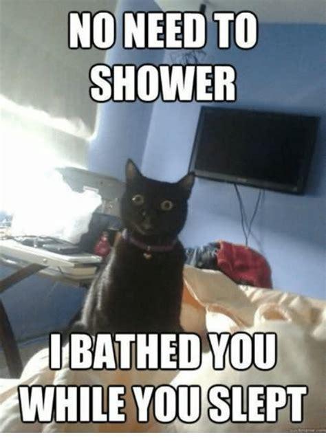 Internet Cat Meme - 35 most funniest grumpy cat memes on the internet