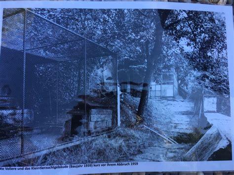 botanischer garten am rhein erbl 252 ht neuem telebasel