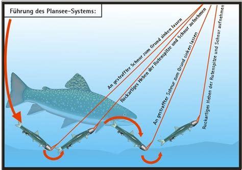 draht bild hängendes system das planseesystem fischerforum ch