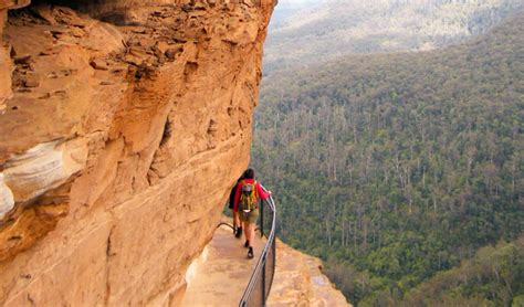 how to pass national national pass nsw national parks