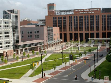 Mba Programs Ohio State by 15 Most Affordable Dental Hygiene Degree Programs