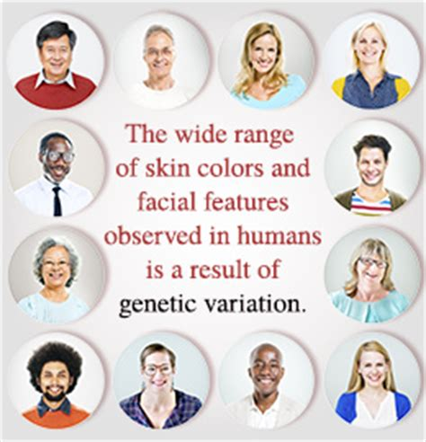 genetic variation: importance, sources, and examples