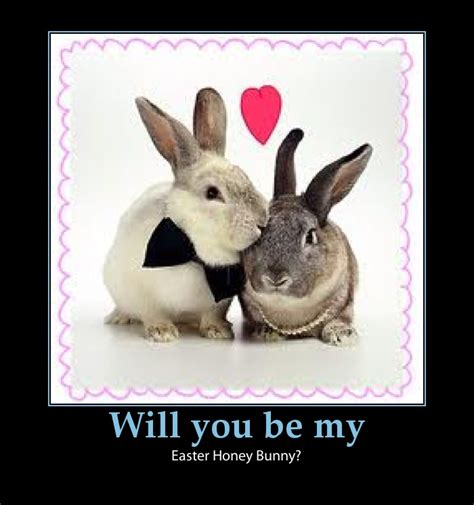 Witzige Osterhasen Bilder by Easter On The Web Easter Bunny Jokes And One Liners