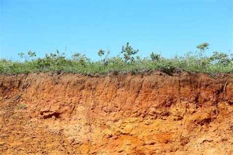 Make Search Sensitive Disrupting Sensitive Soils Could Make Climate Change Worse