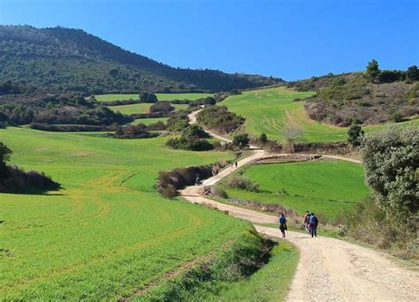 a survival guide to the portuguese camino in galicia information about the portuguese way in galicia books our survival guide to walking the camino de santiago