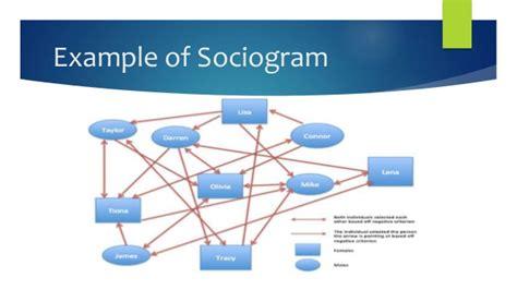 sociogram template sociograms