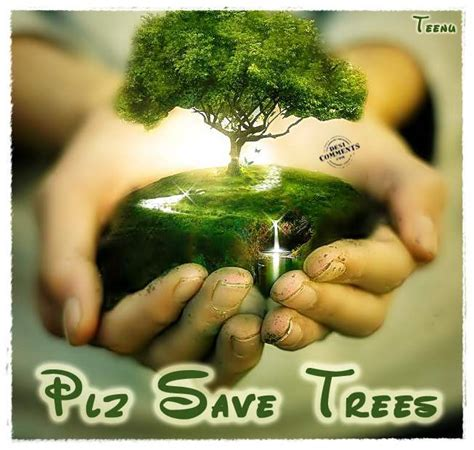Plant Trees Save Earth Essay by Barani Vijaykumar Save Trees Plant A Tree Save The Earth