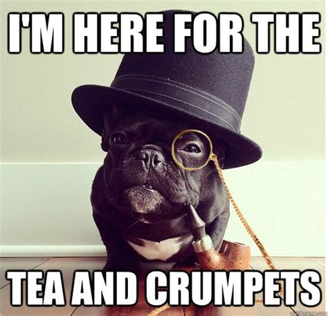 Tea Meme - crumpets summer jobs and party at on pinterest