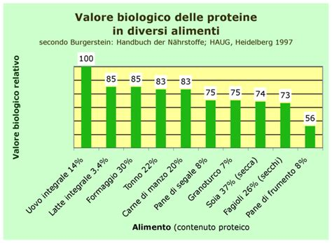 proteine contenute negli alimenti tabella valore biologico
