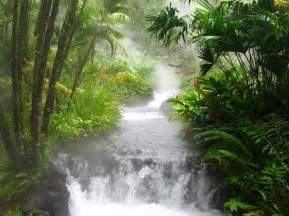 beautiful waterfalls with flowers most beautiful waterfalls in the world amazing photos