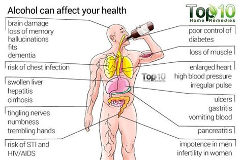Can Detox Weaken Your Immune System by How To Treat Alcoholism Top 10 Home Remedies