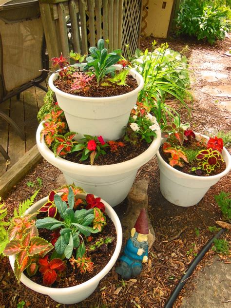 Vegetable Container Gardening: Tips and Techniques   front