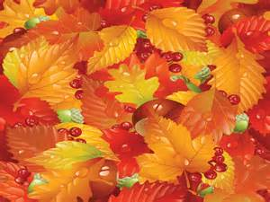 natural leaves in autumn ppt backgrounds design nature