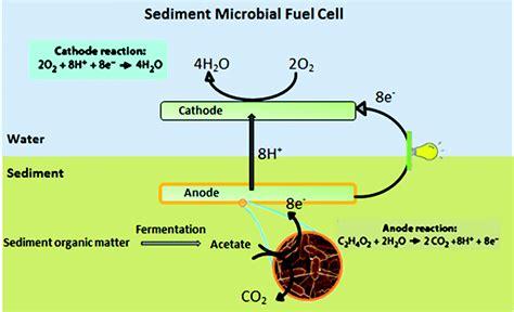 fuel cell research paper fuel cell research paper pdf wiring diagrams wiring