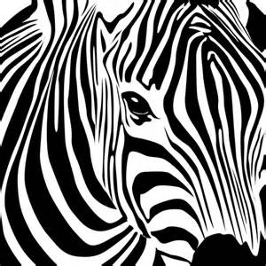 zebra print designs zebra art vector dragonartz designs we moved to
