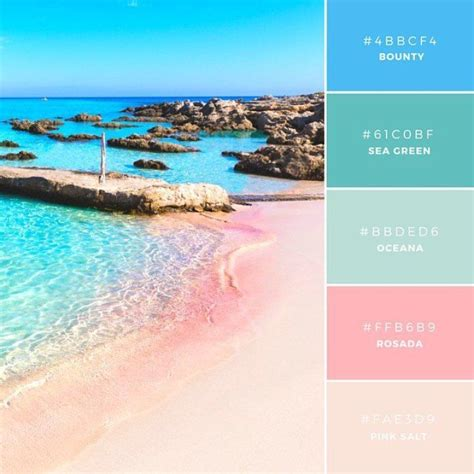 canva color palette ideas best 25 color combos ideas on pinterest color