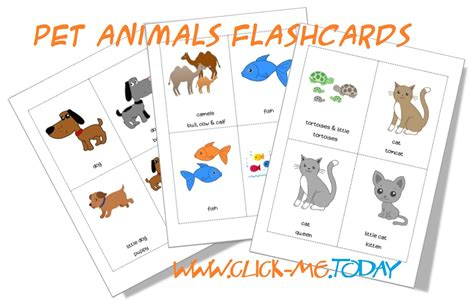 esl printable animal flashcards printable pet animals flashcards for kindergarten