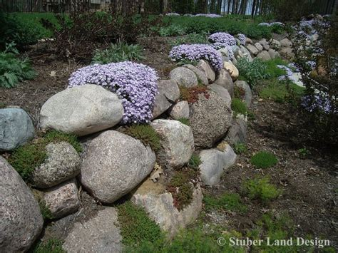 plants that drape over walls granite boulder retaining wall with sedum plantings