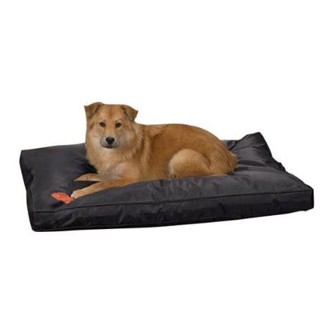 durable dog bed indestructible dog beds webnuggetz com
