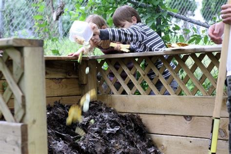 fun winter gardening activities  kids palmers gardeb