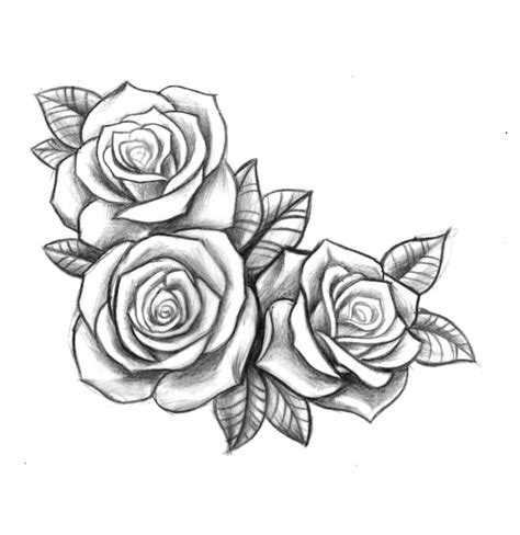 3 rose tattoos 25 best ideas about 3 roses on