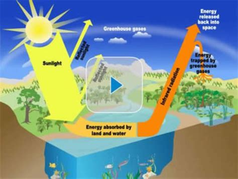 the green house 10 interesting the greenhouse effect facts my interesting facts